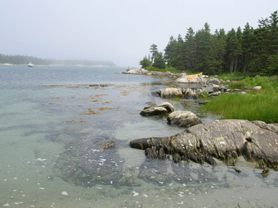 Shelter Cove rocky shore and clear water by Denise McDonald, Nova Scotia Nature Trust