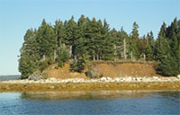 Living Shorelines: A New Approach to Coastal Erosion Management in Nova Scotia