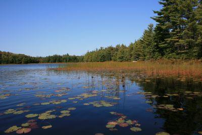 Ship Harbour Long Lake Wilderness Area