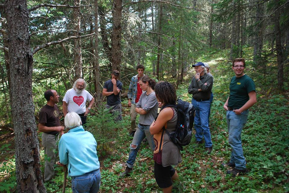 Jamie Simpson: Backyard Forestry: a Weekend Workshop