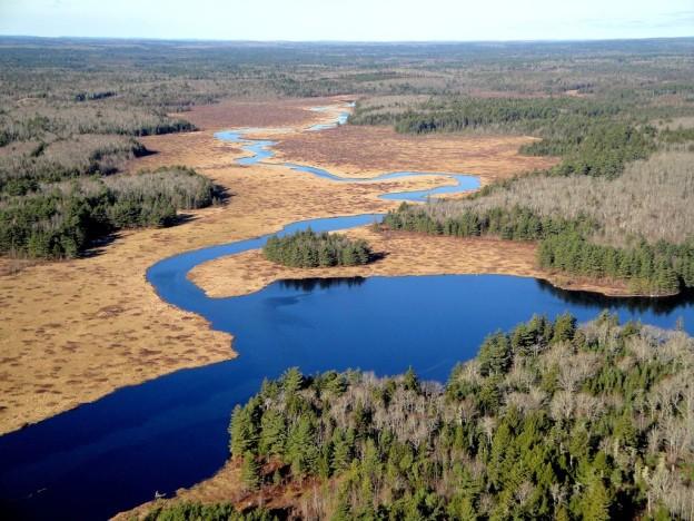 Silver River Wilderness Area: https://www.novascotia.ca/nse/protectedareas/wa_silverriver.asp
